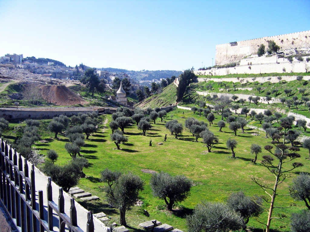 kidron valley from the mt of olives
