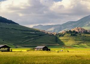 Castelluccio di Norcia from fields below