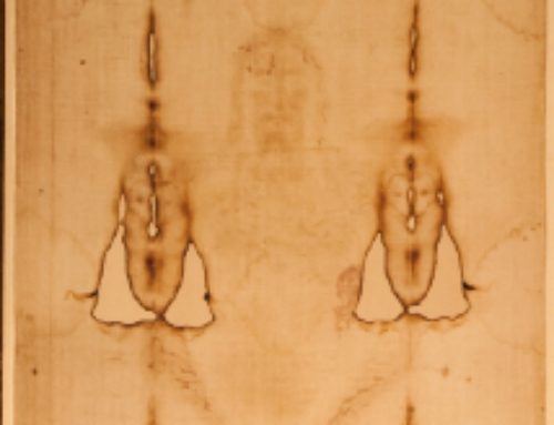 Shroud of Turin: Cloth